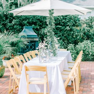 Simple Elegant and neutral baby shower with animals, white and greenery